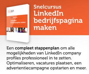 Nederlandse Social Media Academie - LinkedIn bedrijfspagina maken snelcursus ebook - NSMA