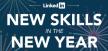 LinkedIn skills - 2013