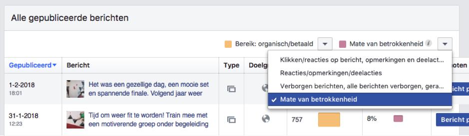 Interactie Facebook Paginastatistieken